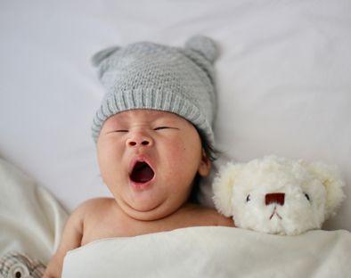 Bebés Don Algodón